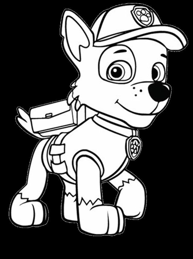 Clique Na Imagem Para Ampliar O Tamanho Patrulha Canina Para