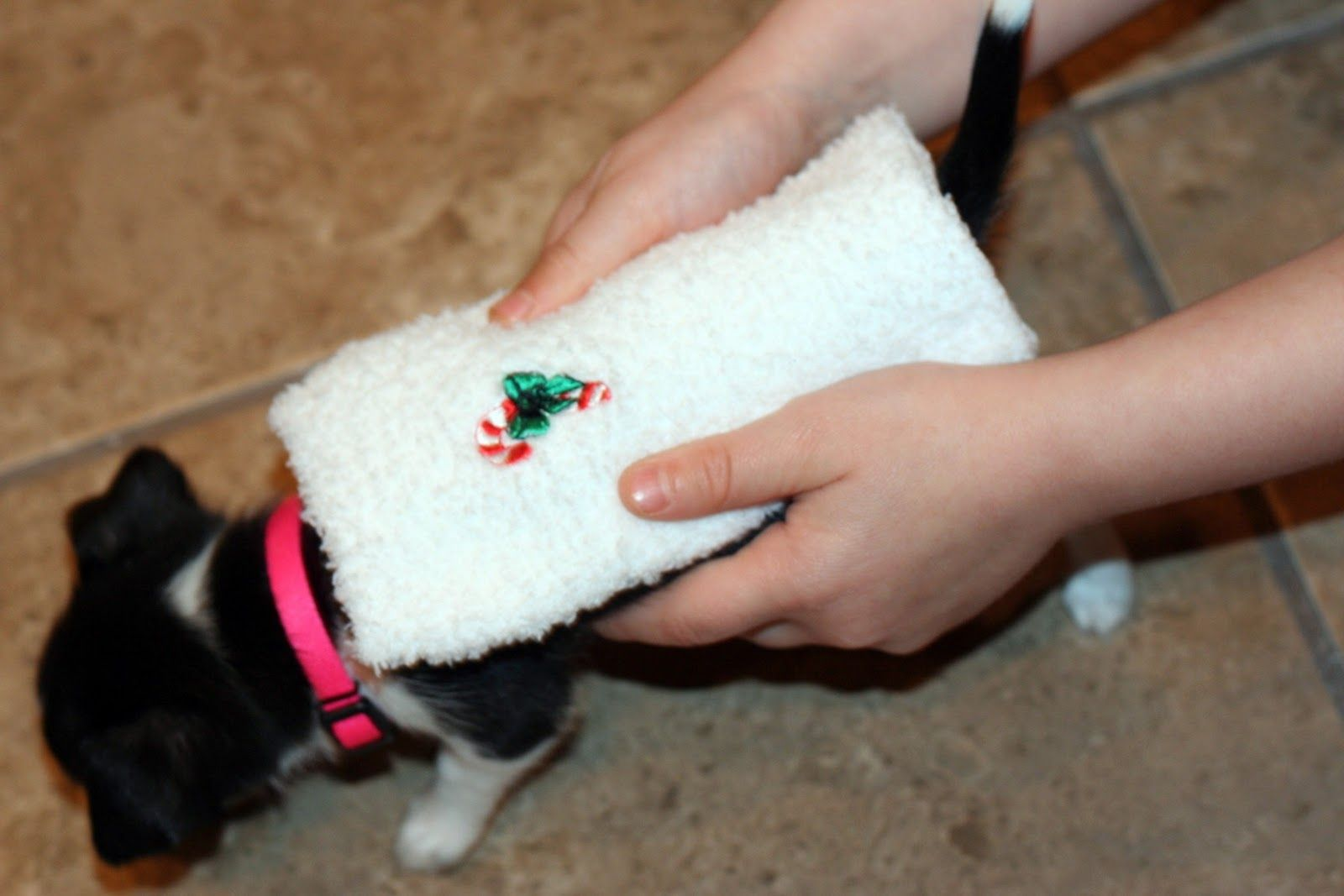 Quickie Tutorial Puppy Sock Sweater (With images) Dog