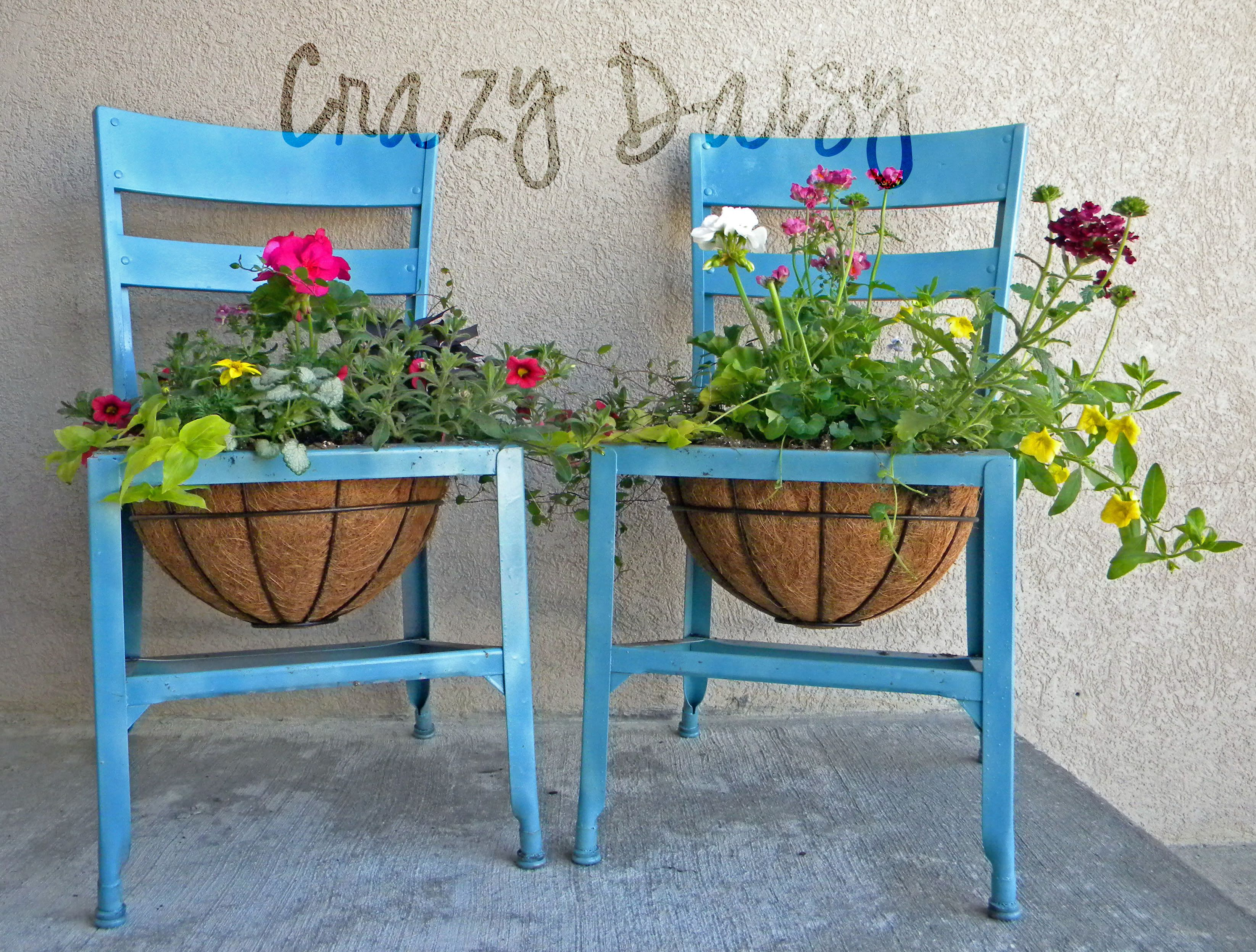 old wooden chairs planter
