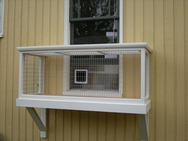Pet Rabbit Ideas Spaces