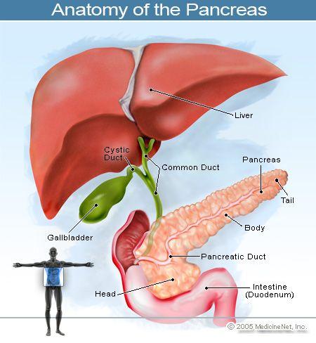What causes diabetes? | Diabetes | Pinterest | Medicine and Diabetes