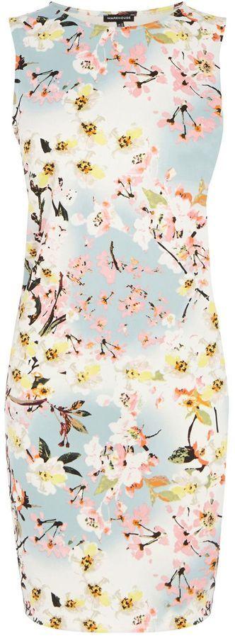 Warehouse Trailing floral scuba dress on shopstyle.com