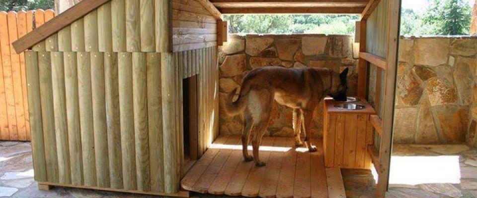 Comment construire une niche pour chien ? Idées pour la maison - etape pour construire une maison