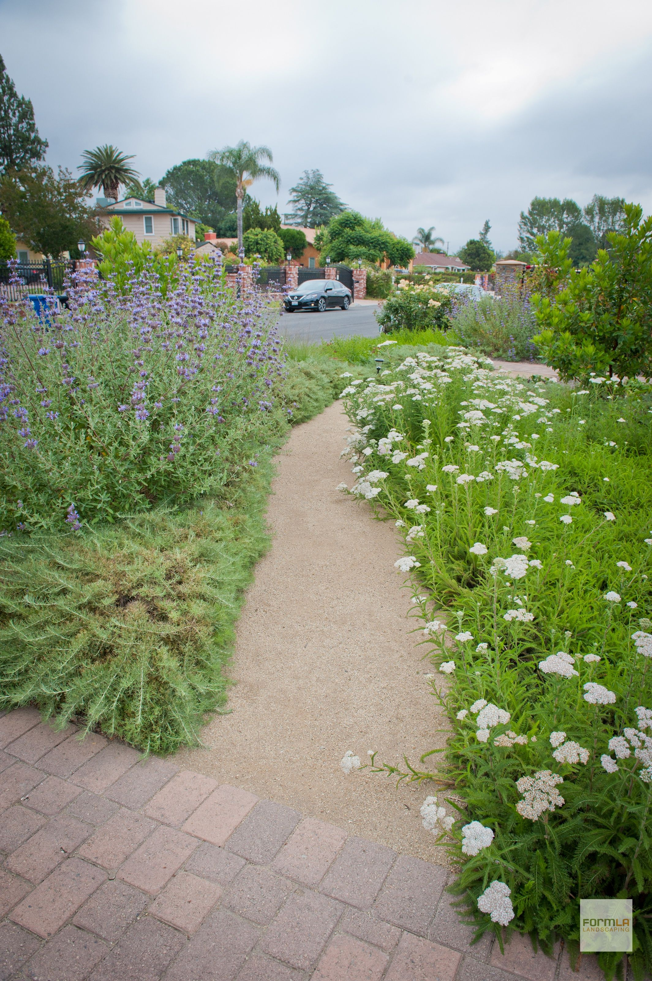 Native plant gardening image by FormLA Landscaping on NPGT ...
