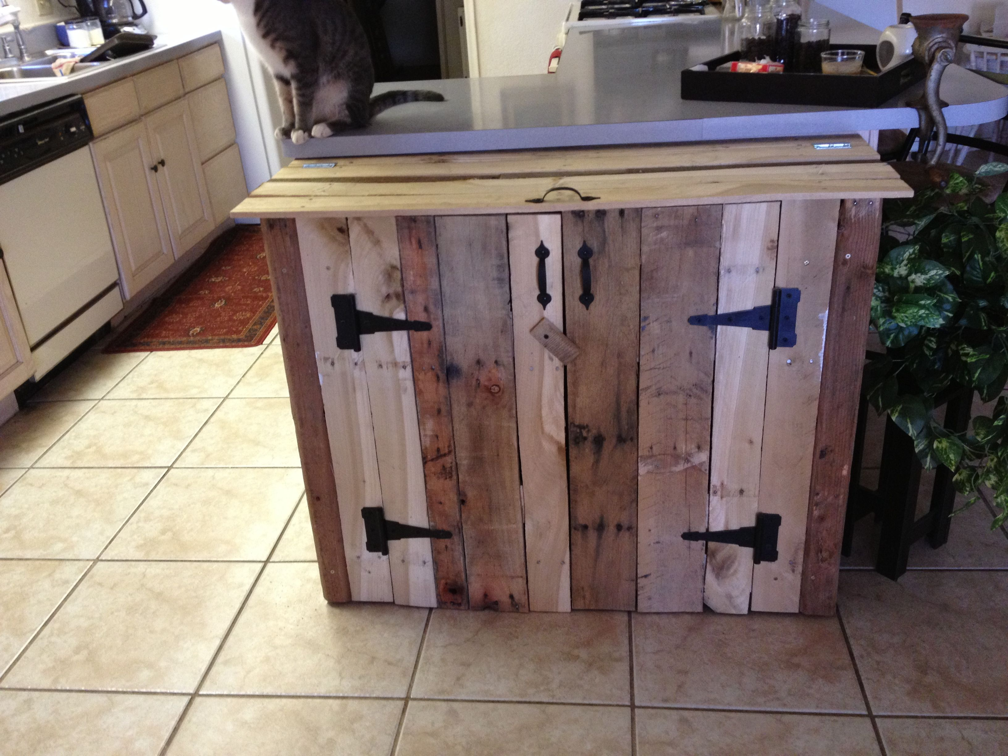 Pallet wood trash can cabinet storage bins pinterest for Kitchen units made from pallets