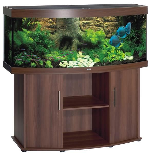 fish tank ideas | 10 Gallon Fish Tank Decoration Ideas ...