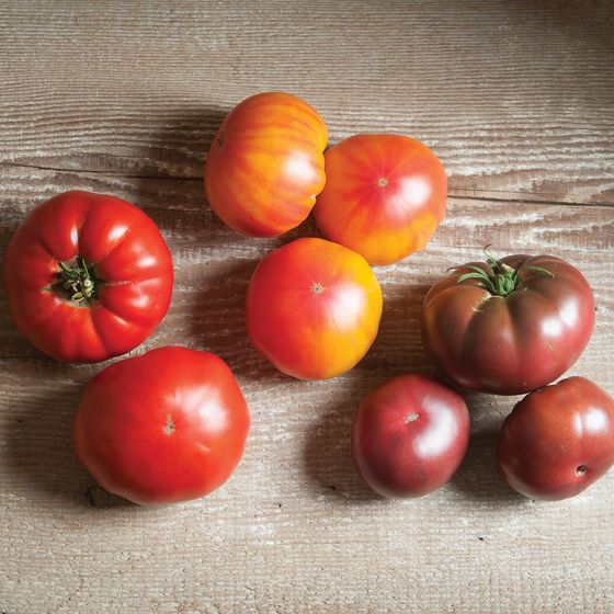 French Heritage Collection Beefsteak Tomatoes Tomato Seeds Heirloom Tomato Seeds Growing Gardens