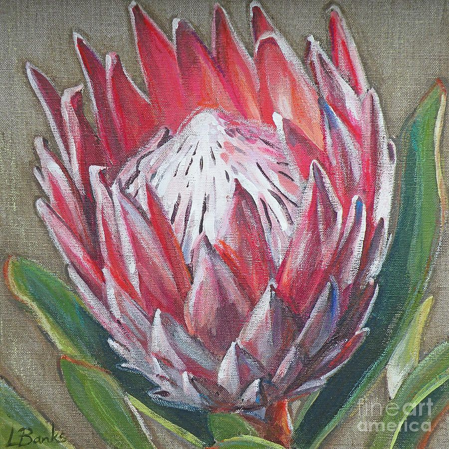 Protea By Leigh Banks Protea Art Flower Art Flower Painting