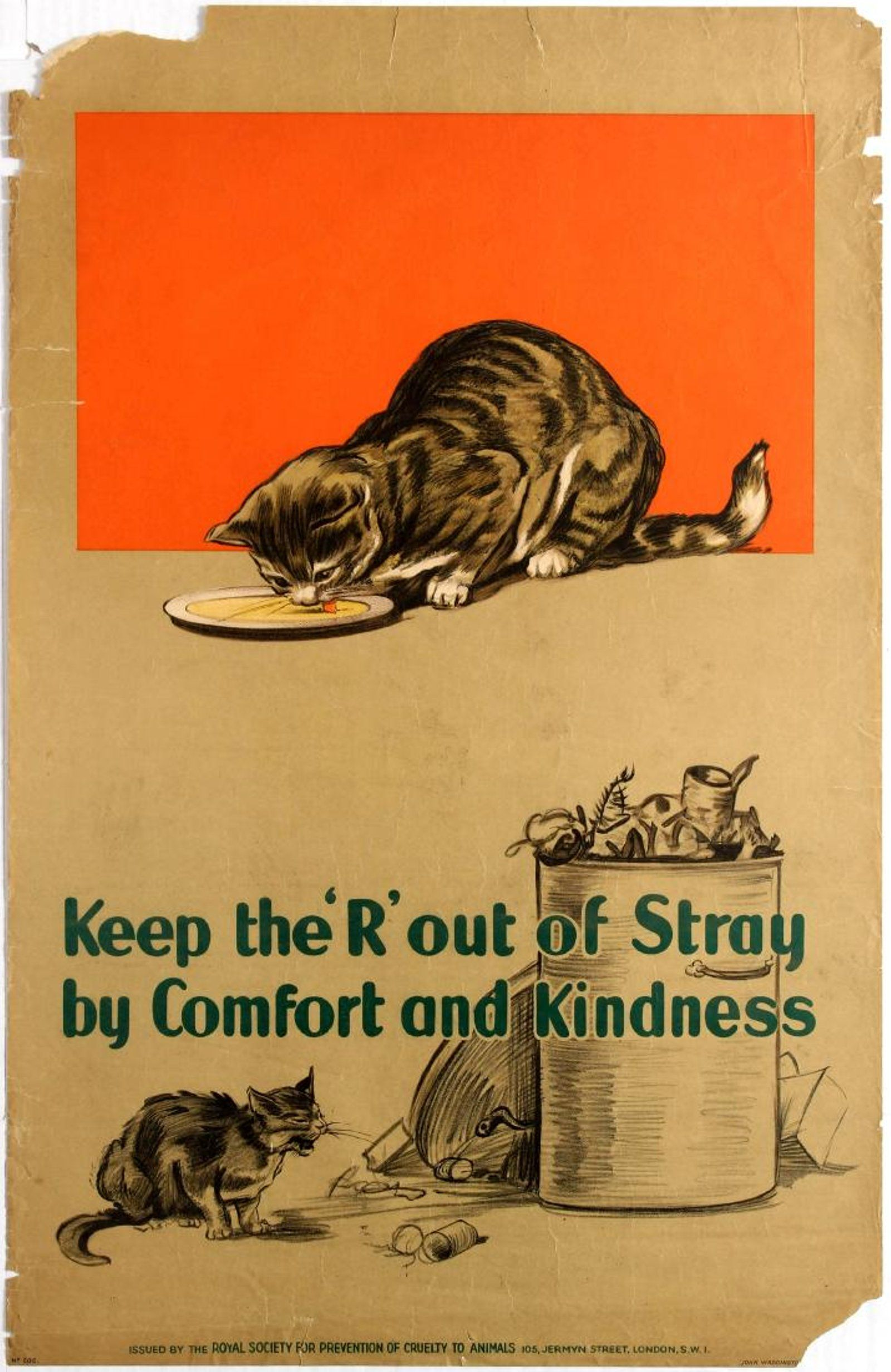 Uk 1920 S Comfort And Kindness For Stray Cats And Kittens