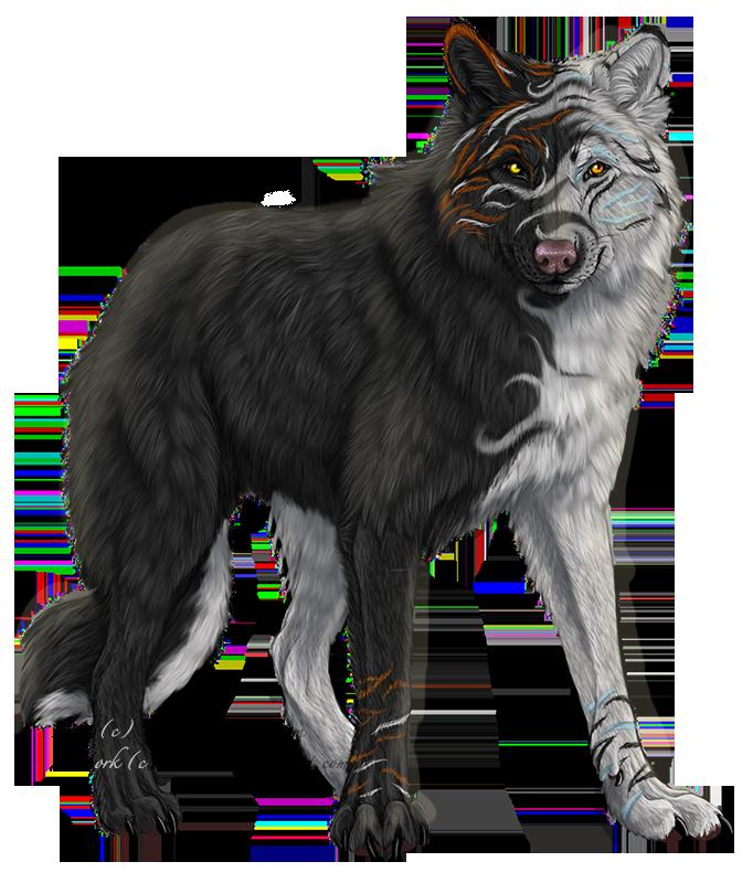 500 Best Digital Art Wolves Images Anime Wolf Wolf Art Fantasy Wolf