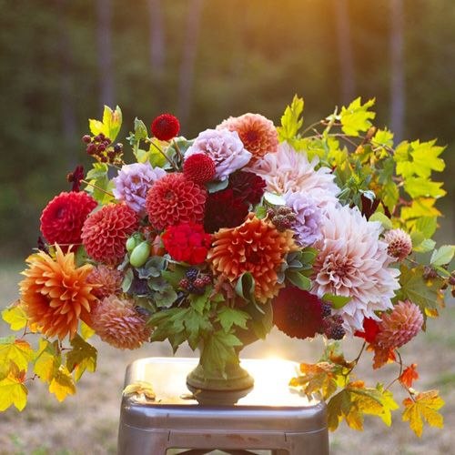 Fleur Friday Flower Centerpieces Wedding Flower Centerpieces Blooms Florist