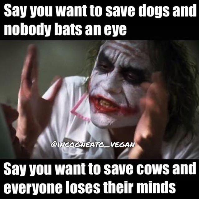 Save the 🐮🐷🐔🐣🐰🐭🐋🐊🐬🐠🐝🐴🐯🐶🐱🐻🐵 #veganproblems  #incogneato_vegan  #donteatthehomies #endanimaltesting #animalrights #maketheconnection #bethechange #animallovers #dog #cat #dogstagram #catstagram #peace #love #compassion #veganmeme #meme #govegan #vegansofig #vegansofinstagram #veganhumor #veganlife #veganlifestyle #plantbased #vegan #friendsnotfood #crueltyfree #eatlikeyougiveafuck #earthlings #vegancommunity