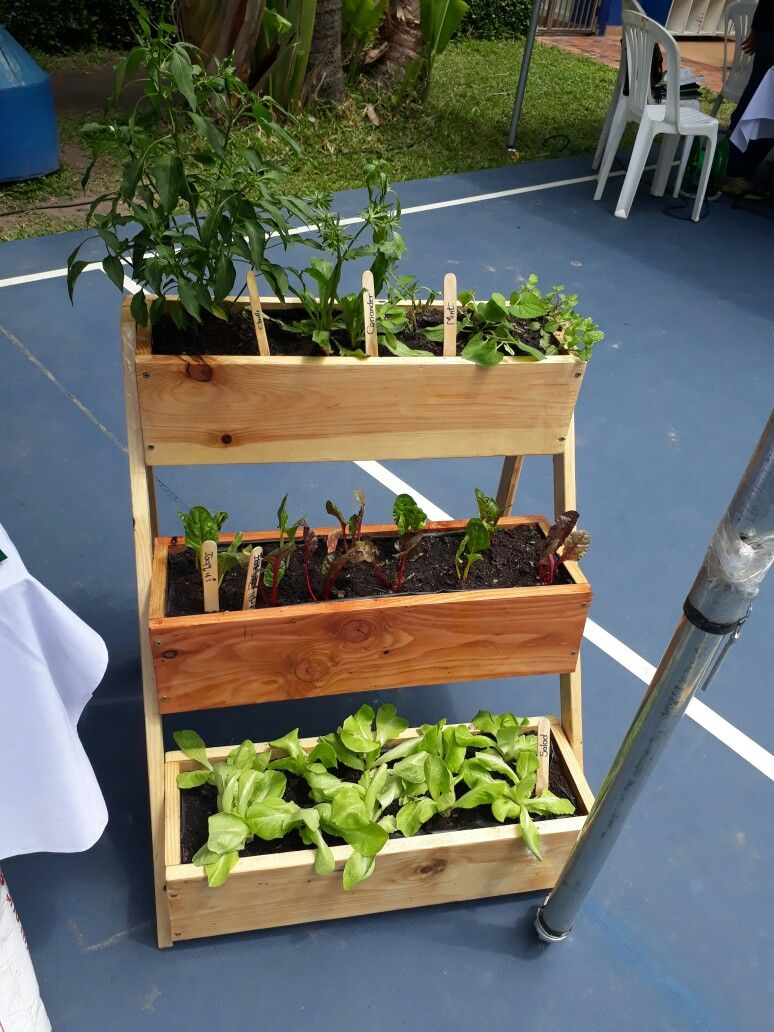 Vertival garden, vertical planter, Vetical wooden planter