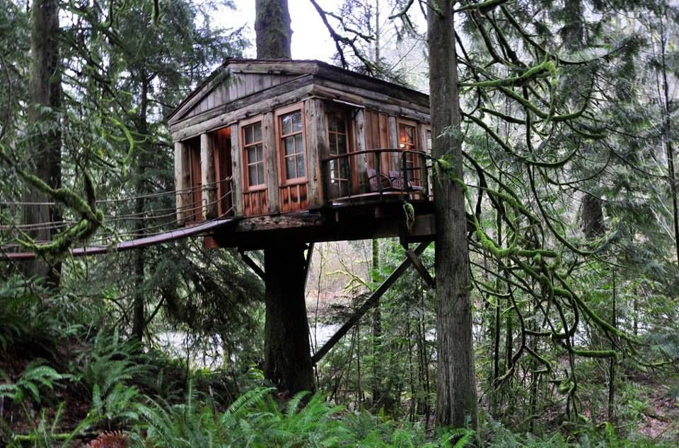 Tree house bed and breakfast. Yes please! Treehouse Point