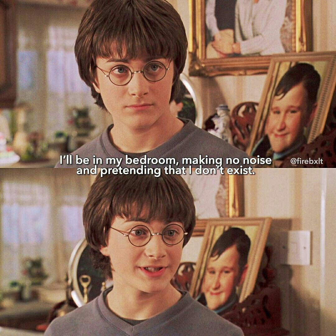 Poor Harry Harry Potter Jokes Harry Potter Harry Potter World