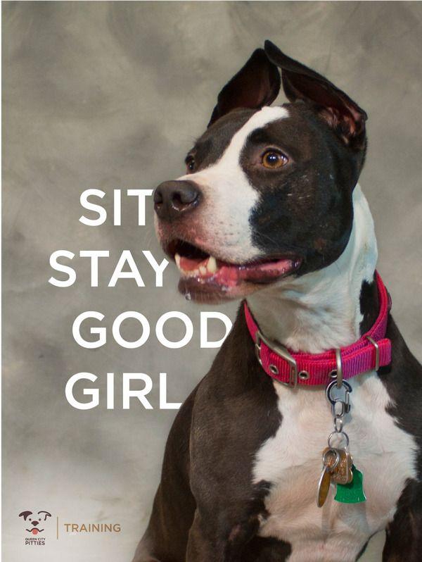 Queen City Pitties By Kristin Lasita Via Behance Puppy Love