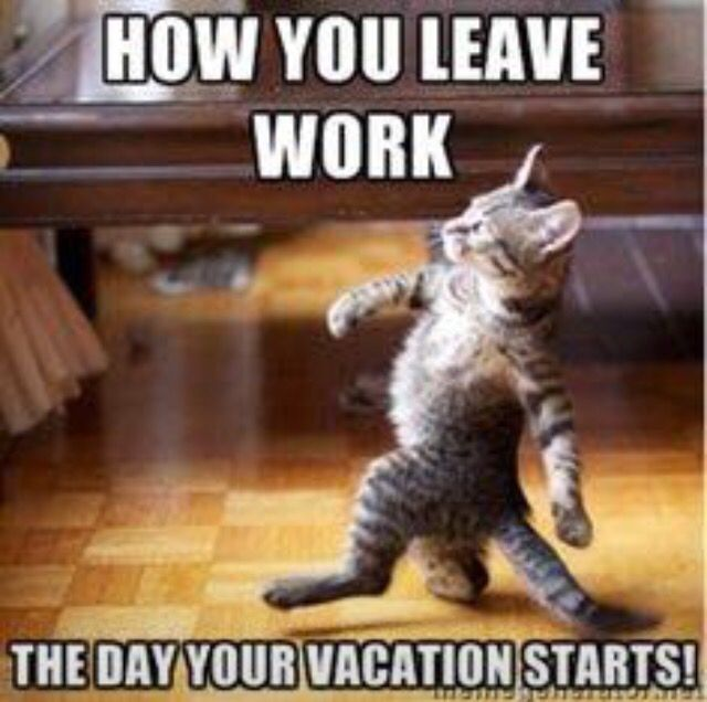 Funny Meme Vacation : Leaving work the day before vacation starts ray
