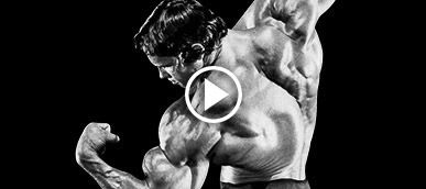 Arnold schwarzeneggers blueprint to mass arnold schwarzenegger blueprint trainer bodybuilding malvernweather Image collections