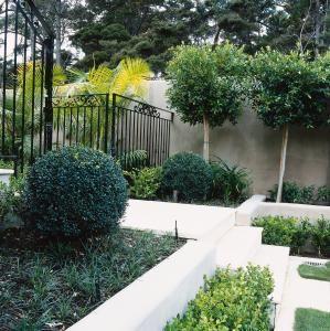 shafer-design-landscape-auckland-22386 | Garden ...