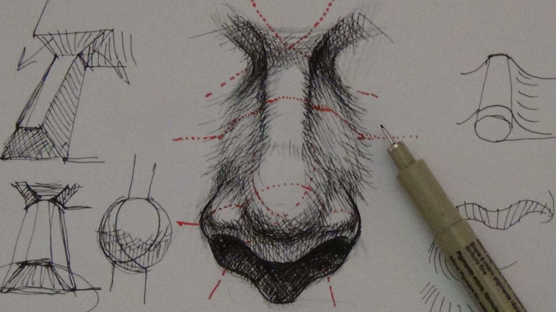 Pen Amp Ink Drawing Tutorials