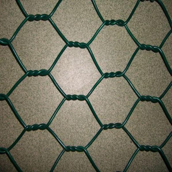 Hexagonal Mesh Hexagonal Netting Hexagonal Perforated