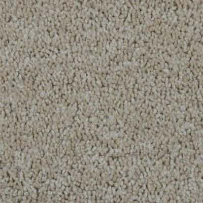 Trafficmaster Bold Signature Color Oakton Texture 12 Ft Carpet H4103 3812 1200 Ab The Home Depot Carpet Samples Oakton Deep Carpet Cleaning