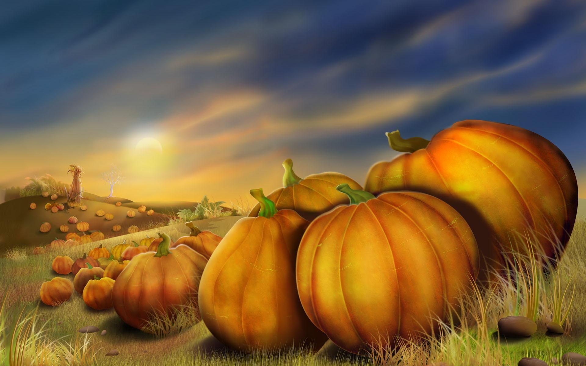 Thanksgiving Pumpkins Thanksgiving background