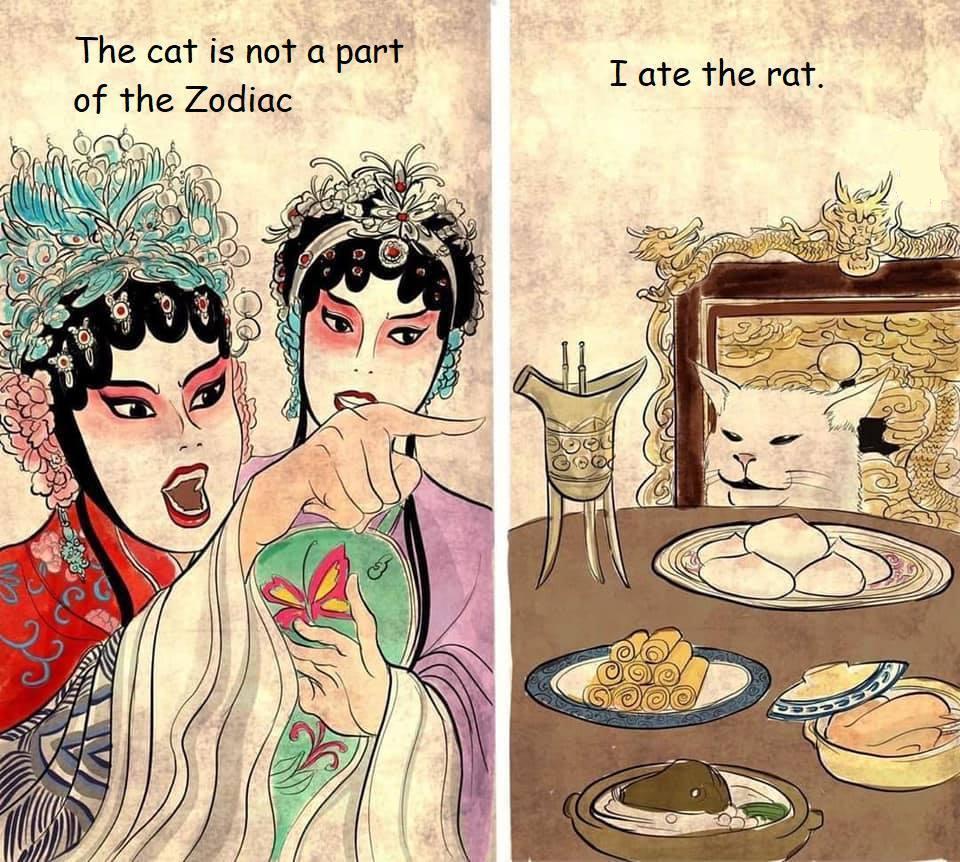 Chinese New Year 2020 Meme Gato Ano Nuevo Chino Meme Gracioso