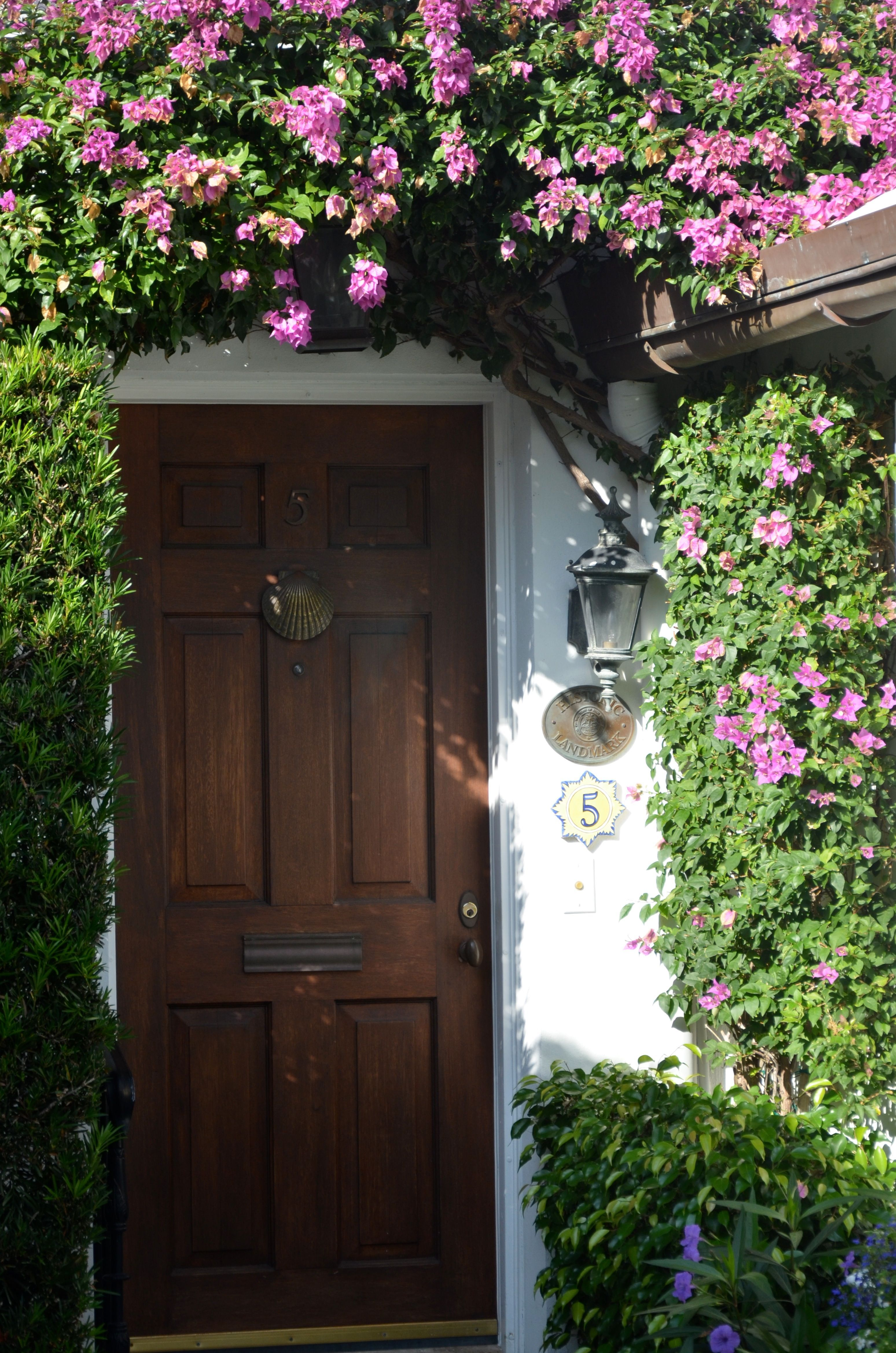 Bougainvillea over Doorway - Major Alley - Palm Beach