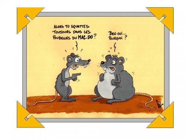 Exceptionnel Dessins humoristiques | Dessins humoristiques, Dessin et De  ME77