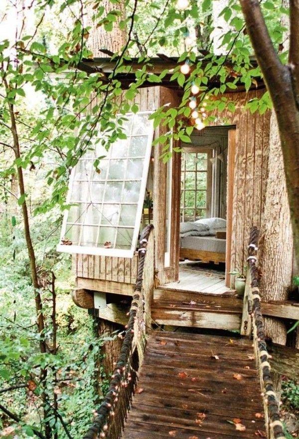 Über 60 verschiedene Baumhäuser mit Tipps für ihre Pflege und Nutzung