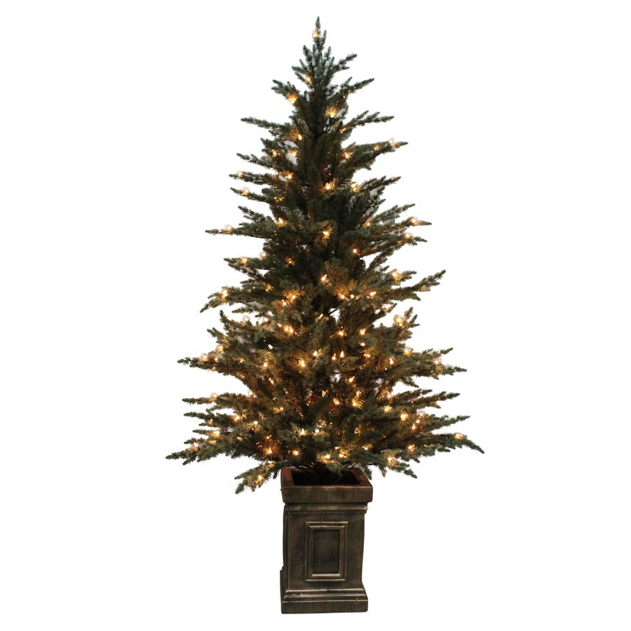 Shop Holiday Living 5 5 Ft Pre Lit Spruce Artificial Christmas Tree