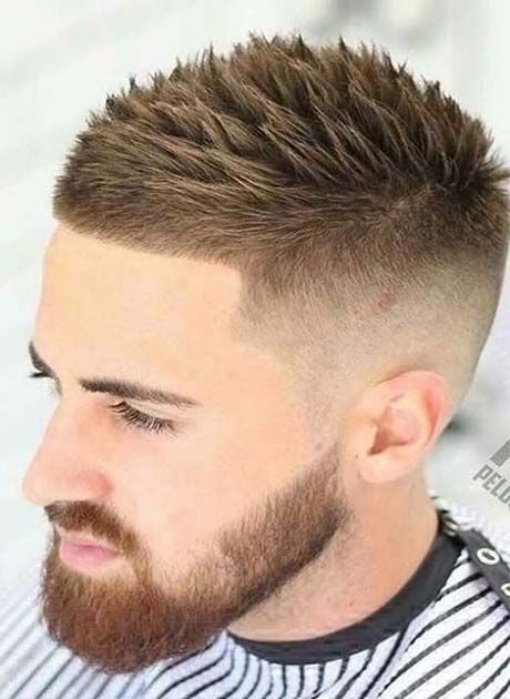Short Haircuts for Men 2019 | Men Hairstyles 2019 | Hair cuts, Hair ...