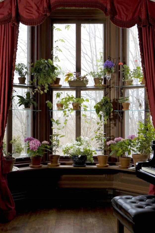 So beautiful iron brackets hold glass shelves at varying - How to hang plants in front of windows ...
