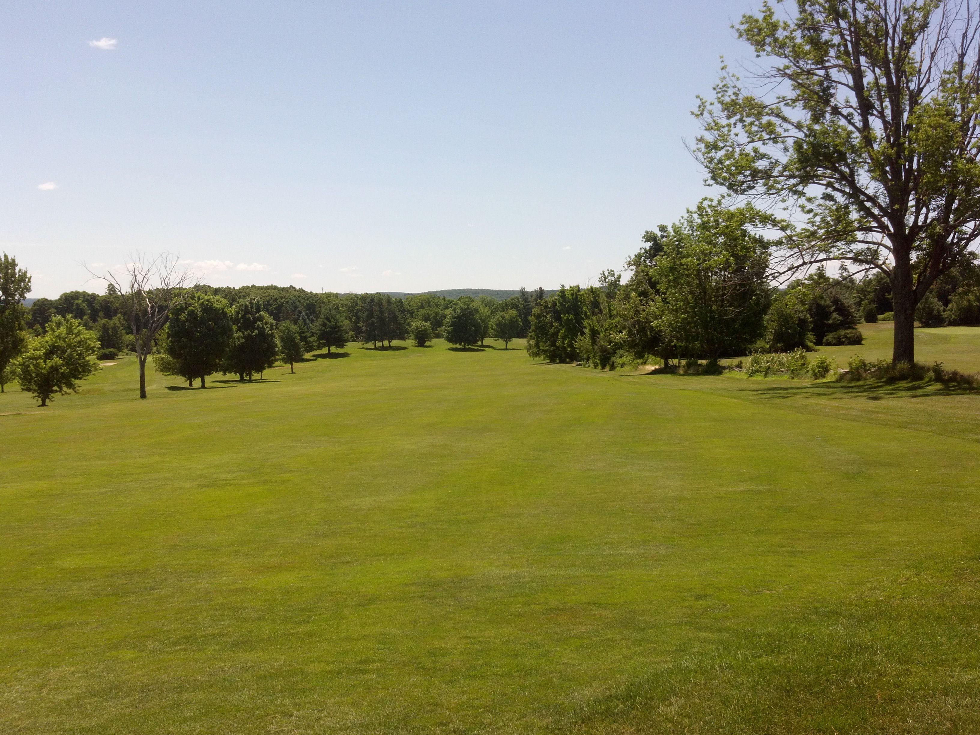 17+ Auburn il golf course information