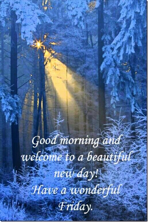 Pin By Vicki On Good Morning For Autumn Winter Pinterest