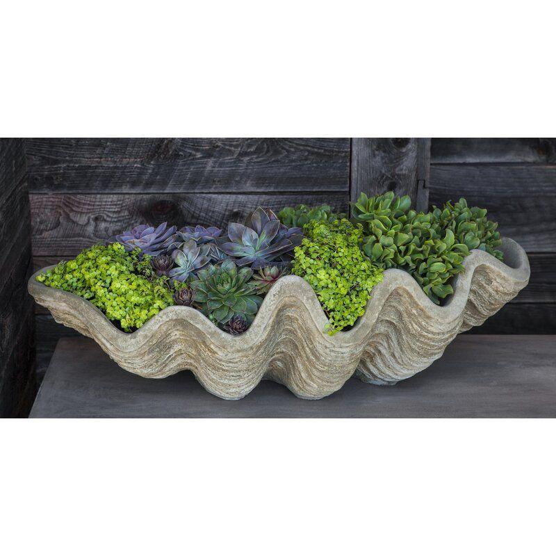 South Seas Shell Cast Stone Pot Planter