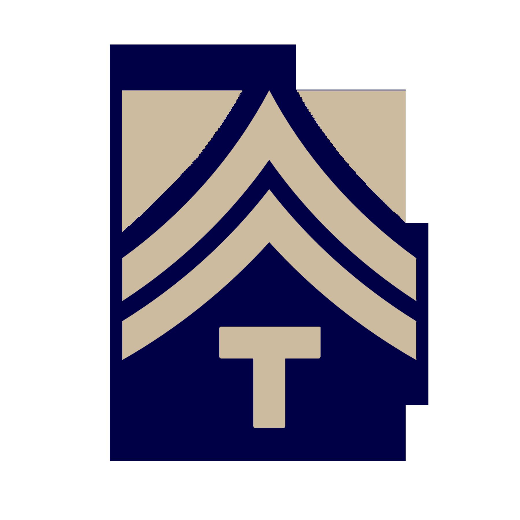 WW2 Technician 5th Grade Rank U.S Army World War Two (lI) Military ...