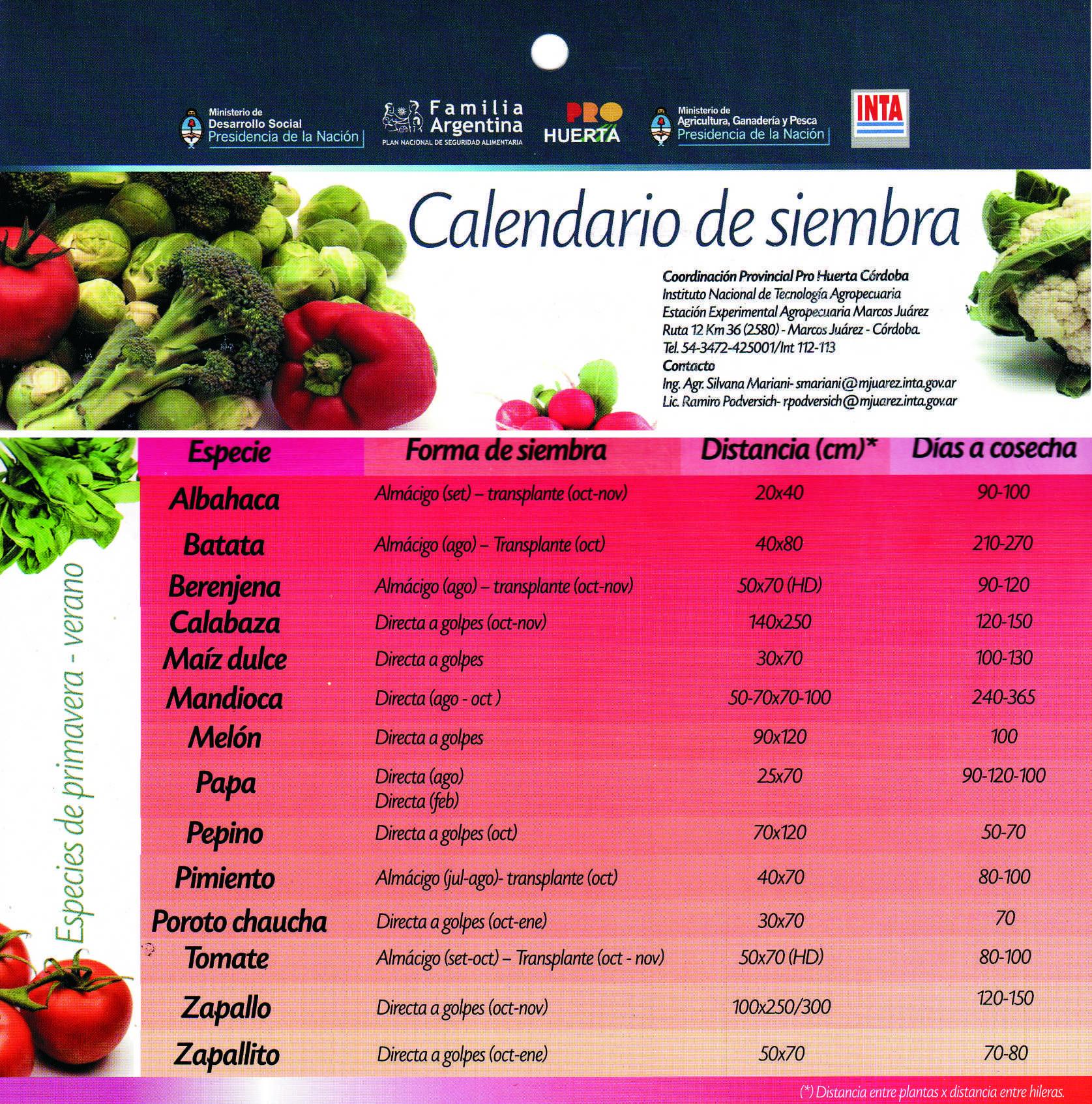 Calendario de siembra pro huerta primavera verano for Arboles para plantar en verano