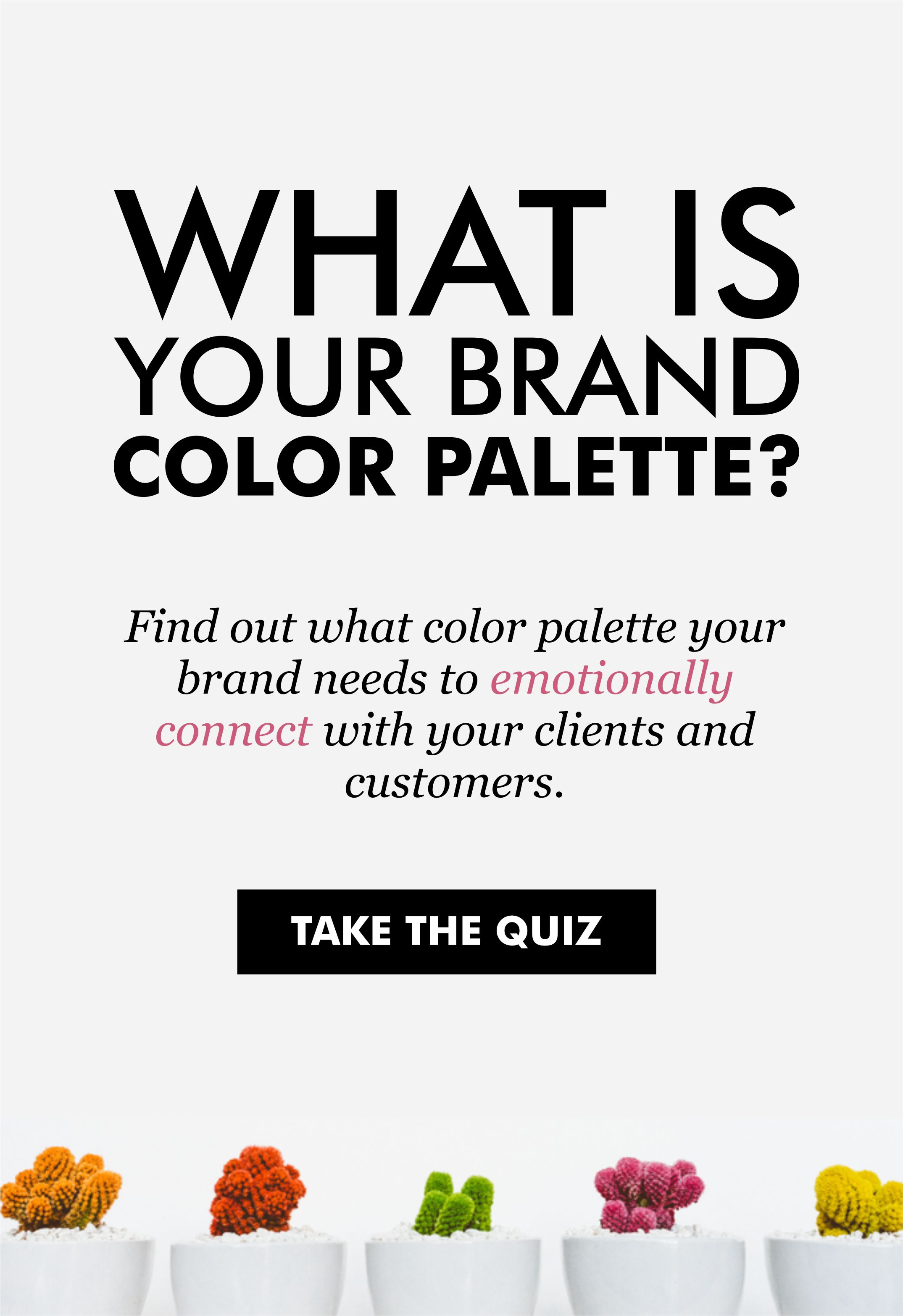 What is your brand color palette Find out what color palette your
