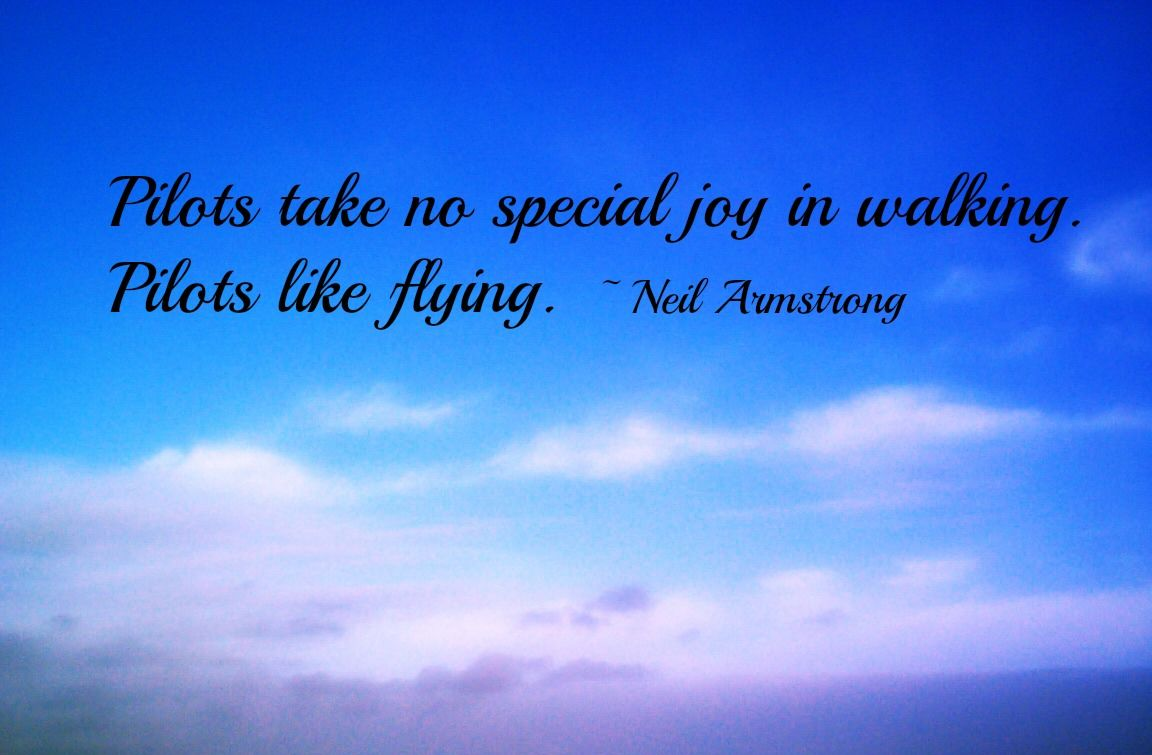 Quotes About Flying Inspirational Flight Quotes Quotesgram Flight Quotes Fly Quotes Inspirational Quotes
