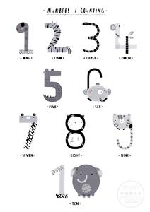 Animal Classification Posters - Twin Set – minimoonnursery