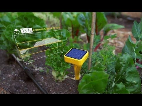 5 Gift Ideas For Men 2018   Gardening Tools and Gadgets   Tech Gifts ...