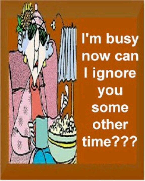 I/'m busy now can I ignore you some other time funny cat humor decor wood sign