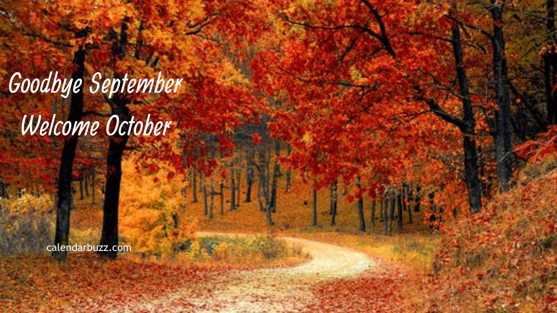 Goodbye September Welcome October Pic Nature Wallpaper Hd Computer Photos