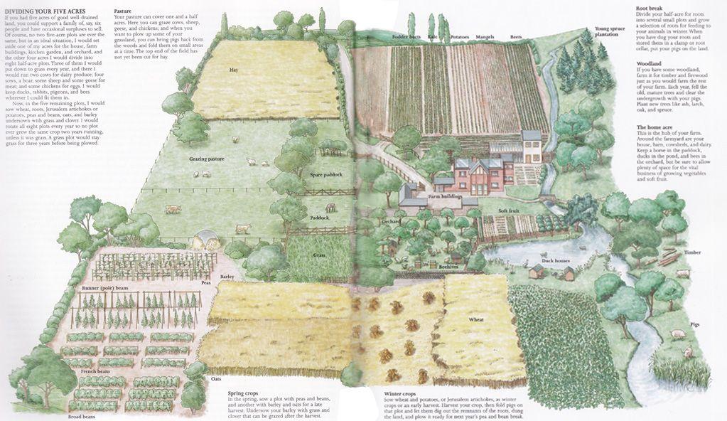 Hydroponics Farm Sample Business Plan