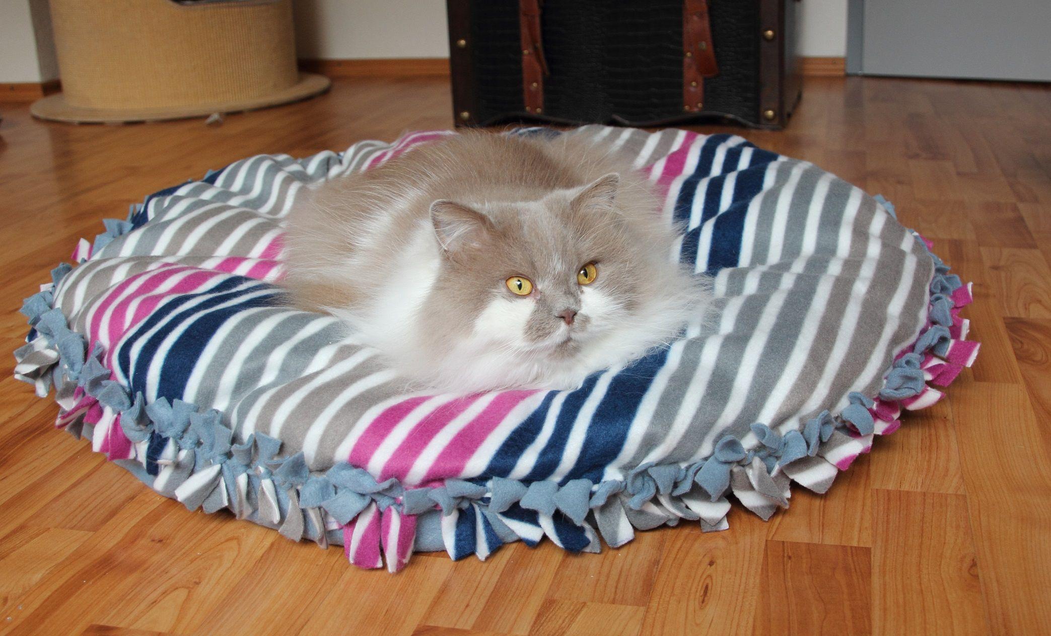 Katzendecke ohne nähen . | Schnittmuster | Pinterest | Nähen, Katzen ...