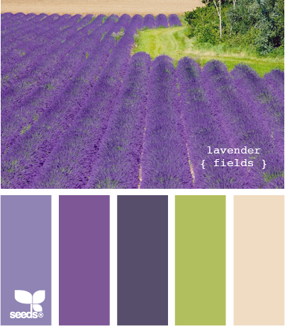 best 25 purple color combinations ideas on pinterest. Black Bedroom Furniture Sets. Home Design Ideas