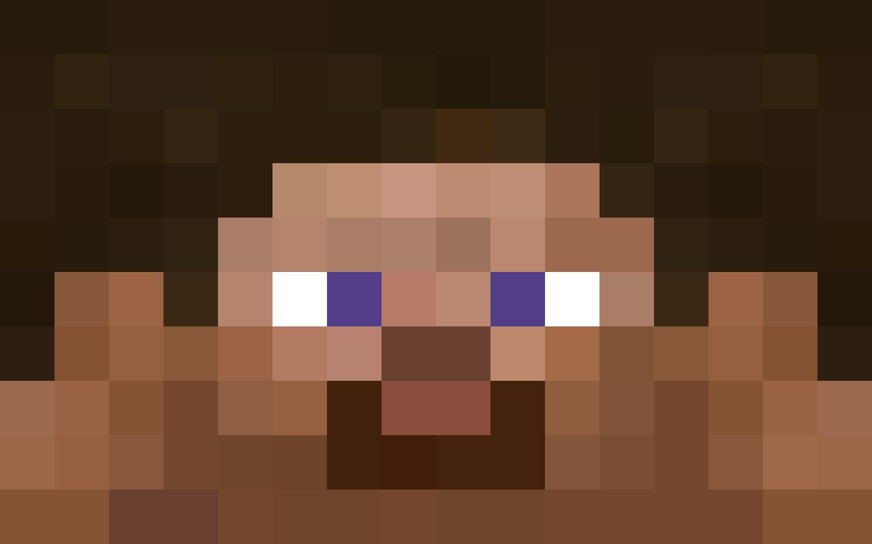 Steve Face!  Minecraft costumes, Minecraft steve, Minecraft face