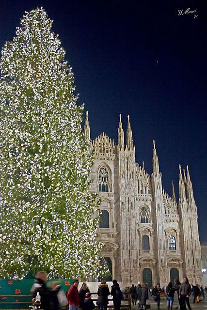 Milano Decorazioni Natalizie.Milan Duomo Albero Di Natale To See In Milan Alberi